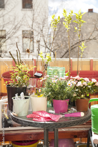 Fotobehang Tuin Balkon bepflanzen