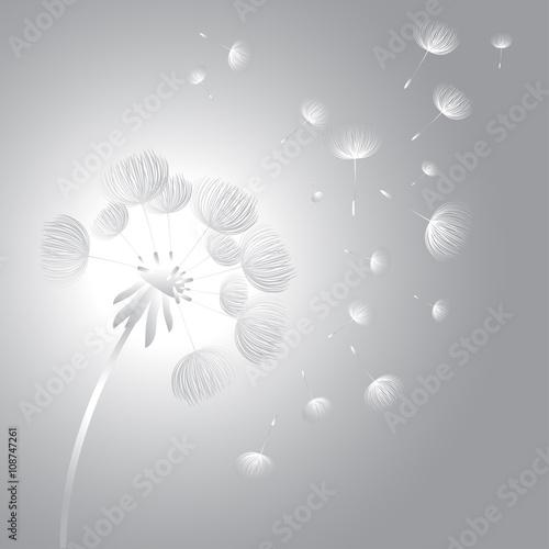abstrakcjonistyczny-puszysty-dandelion-kwiat-ilustracji-wektorowych