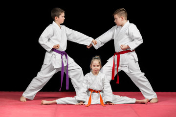 Fototapeta Sztuki walki Group kids Karate martial Arts