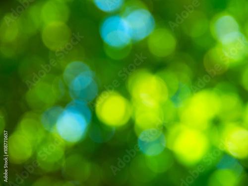 Foto op Plexiglas Groene Natural blurred background.