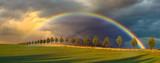 Fototapeta Rainbow - Wielobarwna tęcza nad wiosennym polem