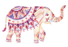 Indian Elephant Watercolor Illustration