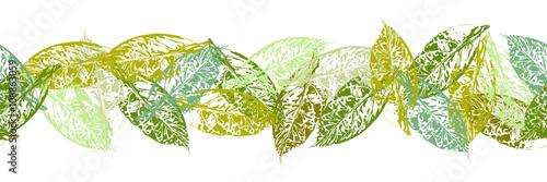 Obraz Nahtlose Bordüre aus Avocado Blättern - fototapety do salonu