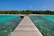 beautiful beach and tropical sea.