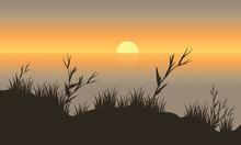 Silhouette Beautiful Scenery Grass