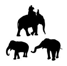 Elephants Black Silhouette On White Background. Vector