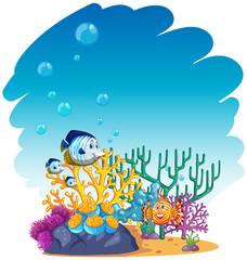 Fototapeta na wymiar Fish swimming in the sea
