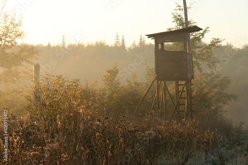 Cadres-photo bureau Chasse Mystisch im Nebel