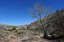 Colorado - Horsethief Canyon