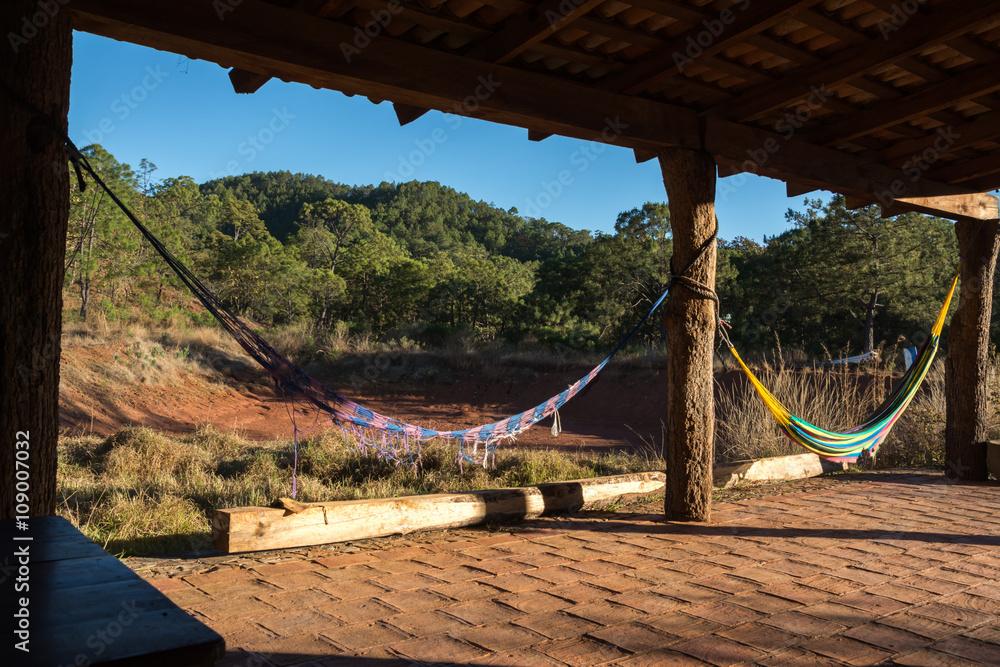 Fotografía Dos hamacas en una terraza en el bosque en Mascota ...