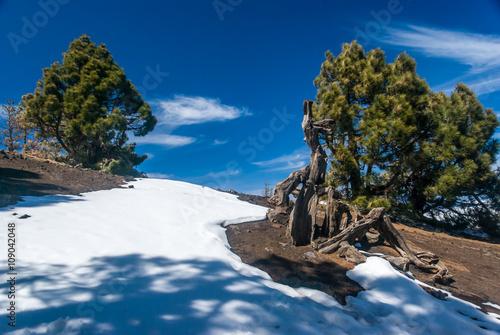 Fotografía  Volcanoes route La Palma canary islands, Spain