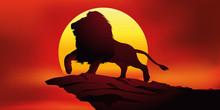 Lion - Roi Des Animaux
