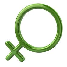 3d Illustration Of Green Female Sign
