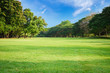 canvas print picture - Green lawn with blue sky in park