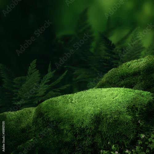 Poster Forets Dark magic forest