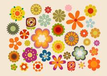 Fleurs Des Années Soixante-di...