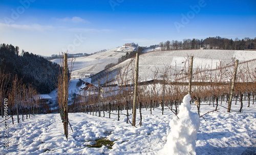 Poster Sheep Ortenau Vineyards in the Wintertime, Black Forest, Germany