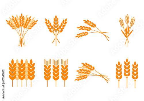 Fotomural Orange cereal icons on white background