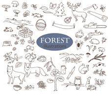 Forest Doodles Collection. Line Art Illustrations Set