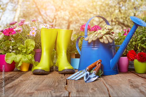 Fototapety, obrazy: Outdoor gardening tools on old wooden table