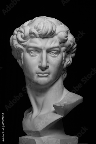 gypsum head of Michelangelo's David Canvas Print
