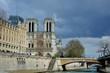 La cathédrale Notre-dame de Paris sur l'île de la cité