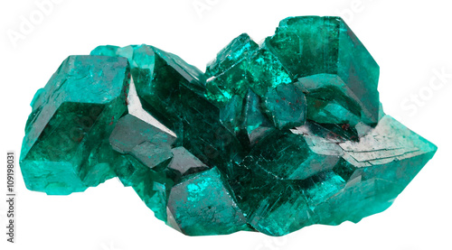 Fotografía  druse of emerald-green crystals of dioptase
