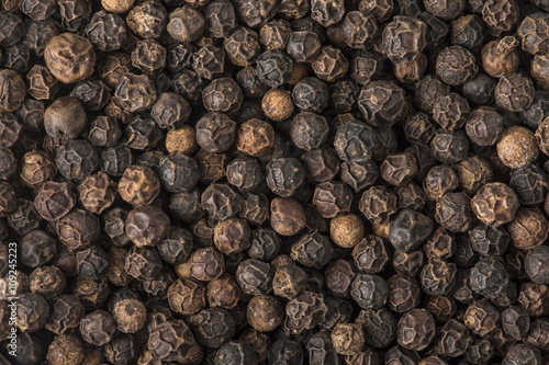 Black Peppercorns - 109245223