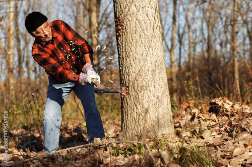 d932c3c2 Senior lumberjack cutting tree with axe in the forest – Kjøp dette ...