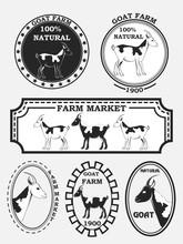 Set Of Goat Labels, Badges And Design Elements. Vector