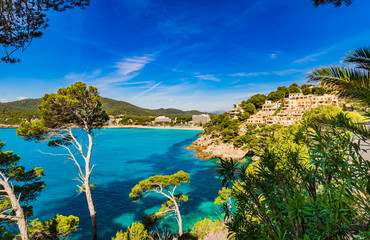 Obraz na PlexiIdyllic view of the bay in Canyamel Majorca Spain Island