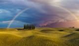 Fototapeta Tęcza - krajobraz Toskanii,tęcza nad polem cyprysów