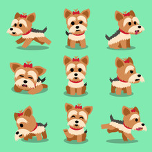 Cartoon Character Yorkshire Terrier Dog Poses Set