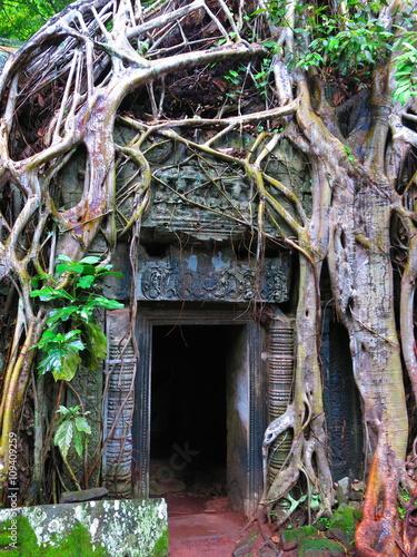 Foto op Plexiglas Bedehuis Ta Prohm temple, Cambodia