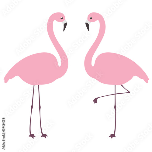 Fotografie, Obraz  Flamingo