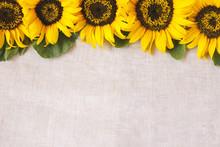 Yellow Sunflowers Copy Space B...