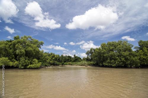 Fotografie, Obraz Schlamiger krokodilverseuchter Fluß in Australien