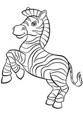 Fototapeta na wymiar Little cute zebra stands and smiles.