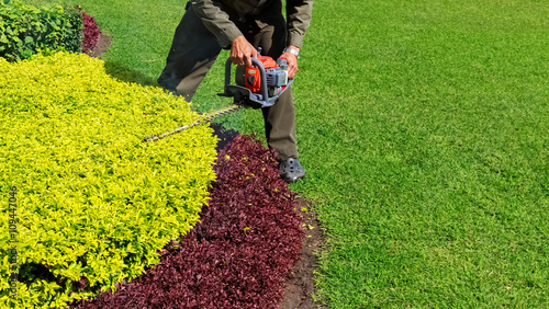 Photo  A man trimming shrub with Hedge Trimmer, Green grass copyspace