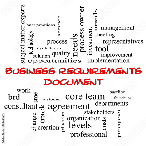 Photo  Business Requirements Document Word Cloud Concept in red caps