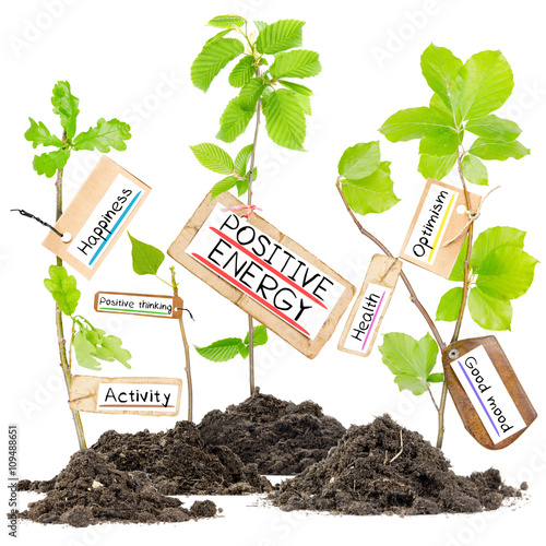 Fotografie, Obraz  Plant Label Concept