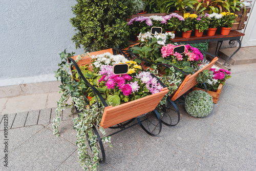 Potted Flowers On Showcase Near The Flower Shop Spring Sale Of