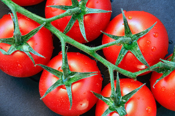 Close-up of some ripe tomatoes on the vine