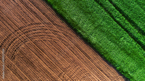 Foto op Plexiglas Groene Aerial view over the agricultural fields