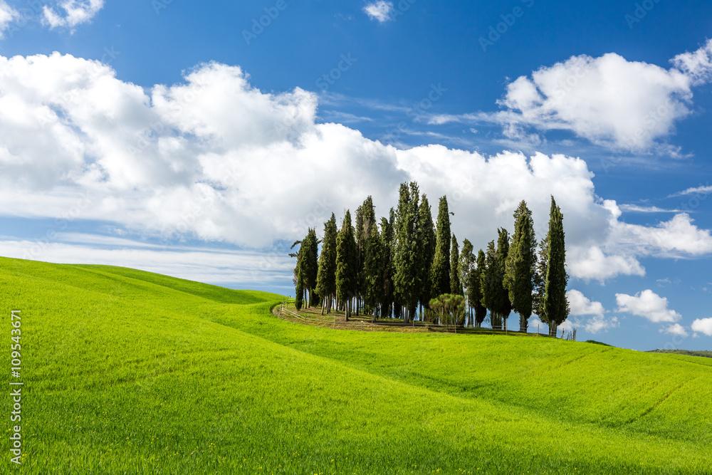 Fototapety, obrazy: Piękny krajobraz w Toskanii we Włoszech