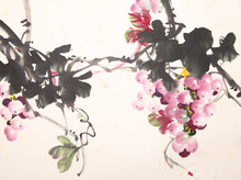 Chinese Ink Grape Drawing
