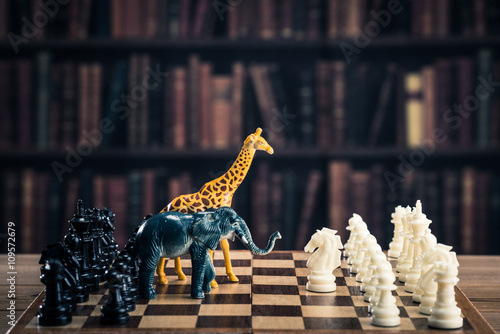 Photographie Chess image animaux
