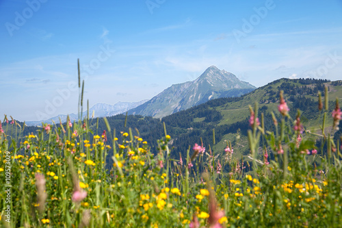 Fotografie, Obraz  mountain peak over Alpine meadows