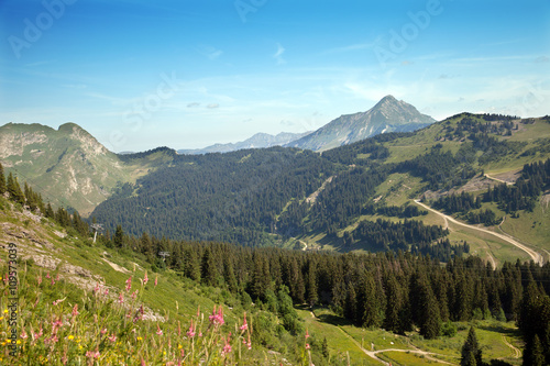 Fotografie, Obraz  Top view of French Alps near from Morzin