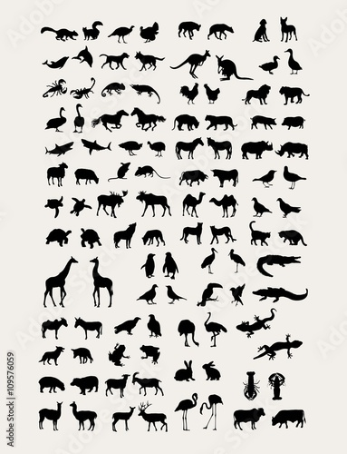 Animal  Silhouette Collection, art vector design Wall mural